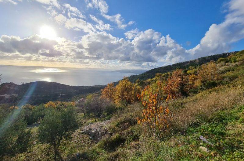 Makarska poljoprivredno zemljište 1133m2