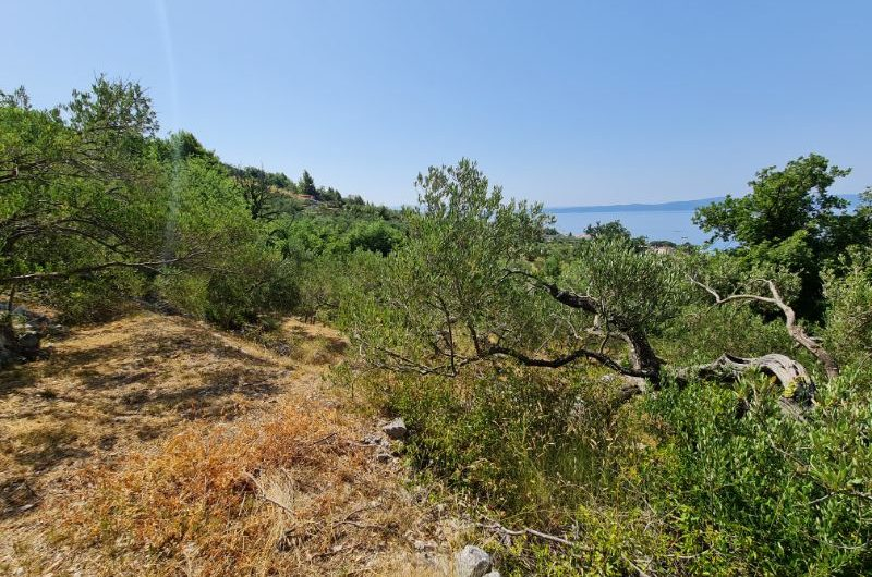 Tučepi zemljište 496m2 s otvorenim pogledom na more